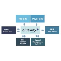 Case Study: Blueway Tracker