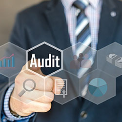 A Good Healthcare Audit Response Process Starts With Great Software